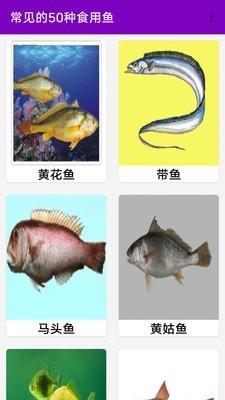 同聚元鱼类烹饪指南